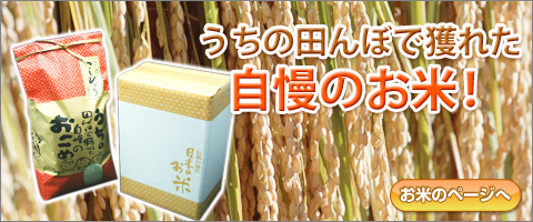 うちの田んぼで獲れた自慢のお米!